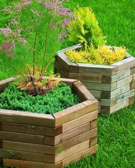 Royal Hexagonal Planter